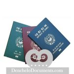 Buy South Korean Passport Online