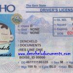 Buy Idaho Drivers License Online – ID